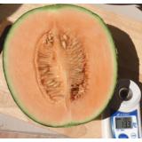 Dưa lưới AB/TL3  ruột cam trồng nhà màng theo công nghệ Isarael